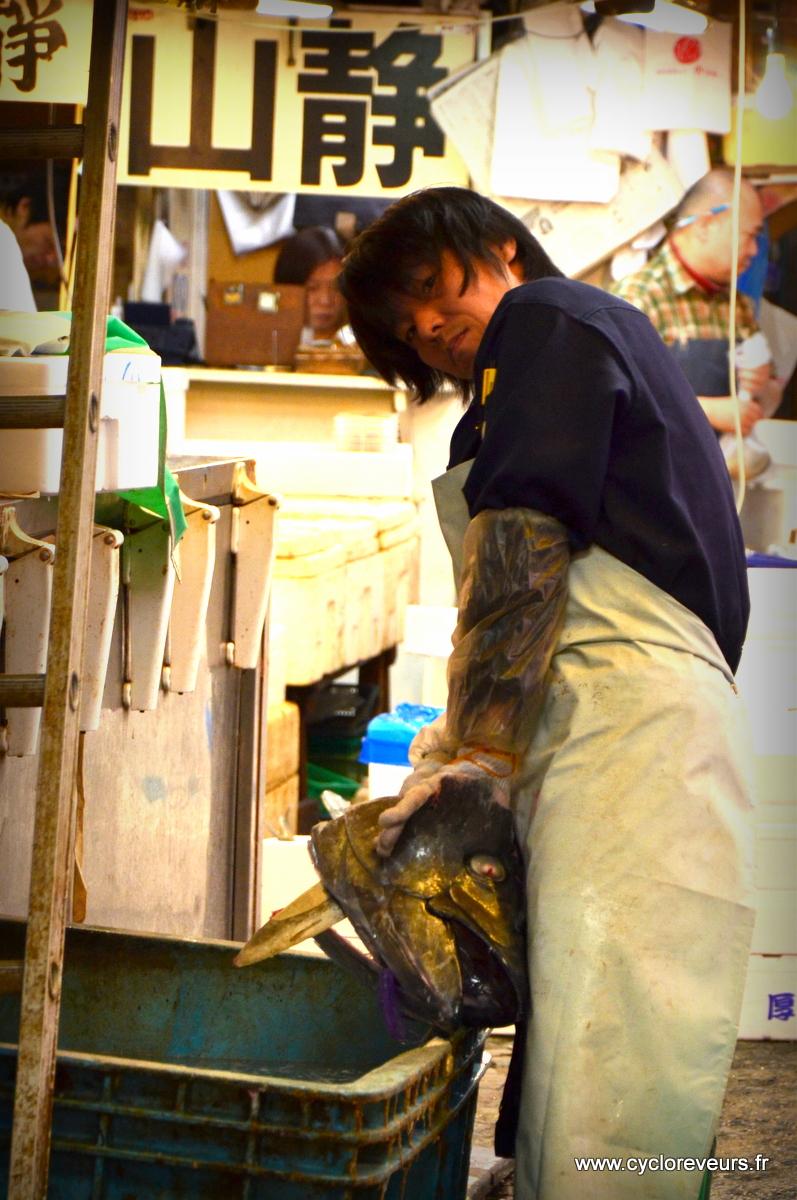 Pour ceux qui arriveraient au marché après 10h, ils auraient un peu l'impression de visiter le marché aux têtes de poisson ! Voyez un peu la taille de celle-ci !