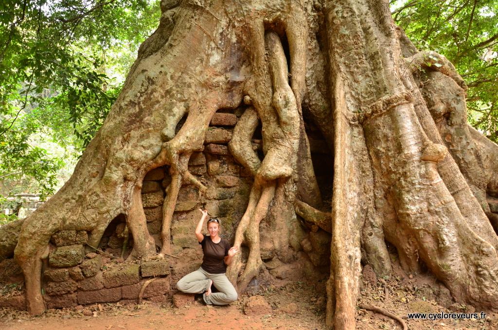 Apsara d'apparat devant un arbre géant !