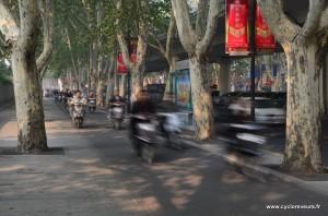 L'essor des scooters électriques est incroyable. La Chine n'st plus le pays du vélo, on en voit vraiment beaucoup moins que de scooters. Et quand on pense aux 30kg de batteries dans chaque cela fait mal au coeur...