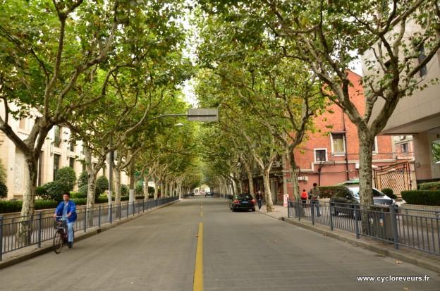 Tout un quartier avec des routes bordées de platanes : la classe française à Shanghai ;)
