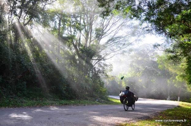 10h30 : le soleil chasse la brume !
