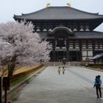 Le Daibutsu, qui abrite le grand Bouddha