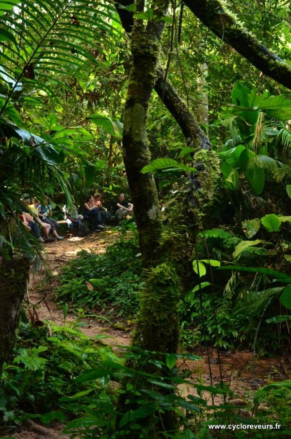 Trek - Gibbon experience - Huay Xay - Bokeo - Laos