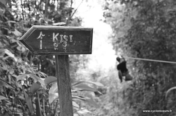 Tyrolienne et signalisation du trek - Gibbon experience - Huay Xay - Bokeo - Laos