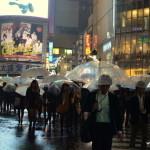 """Passage piéton de Shibuya, connu depuis """"Lost in Translation"""""""